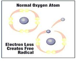 The problems in our body occur when the chemical reactions in the cell are damaged – thus causing the release of electrons from atoms creating the free radicals.